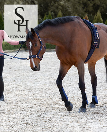 SHOWMASTER Lungeing & Horse Groundwork