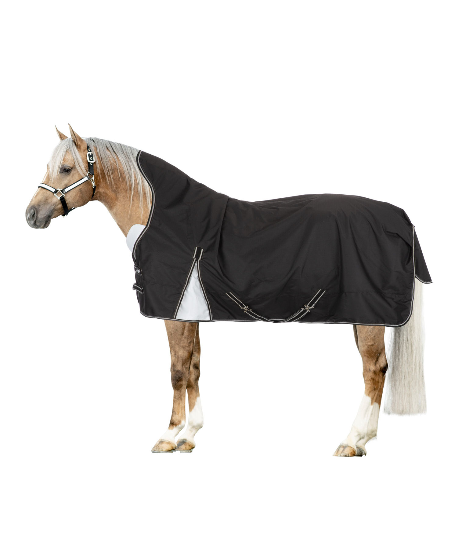 High Neck Turnout Rug Allie, 100 g