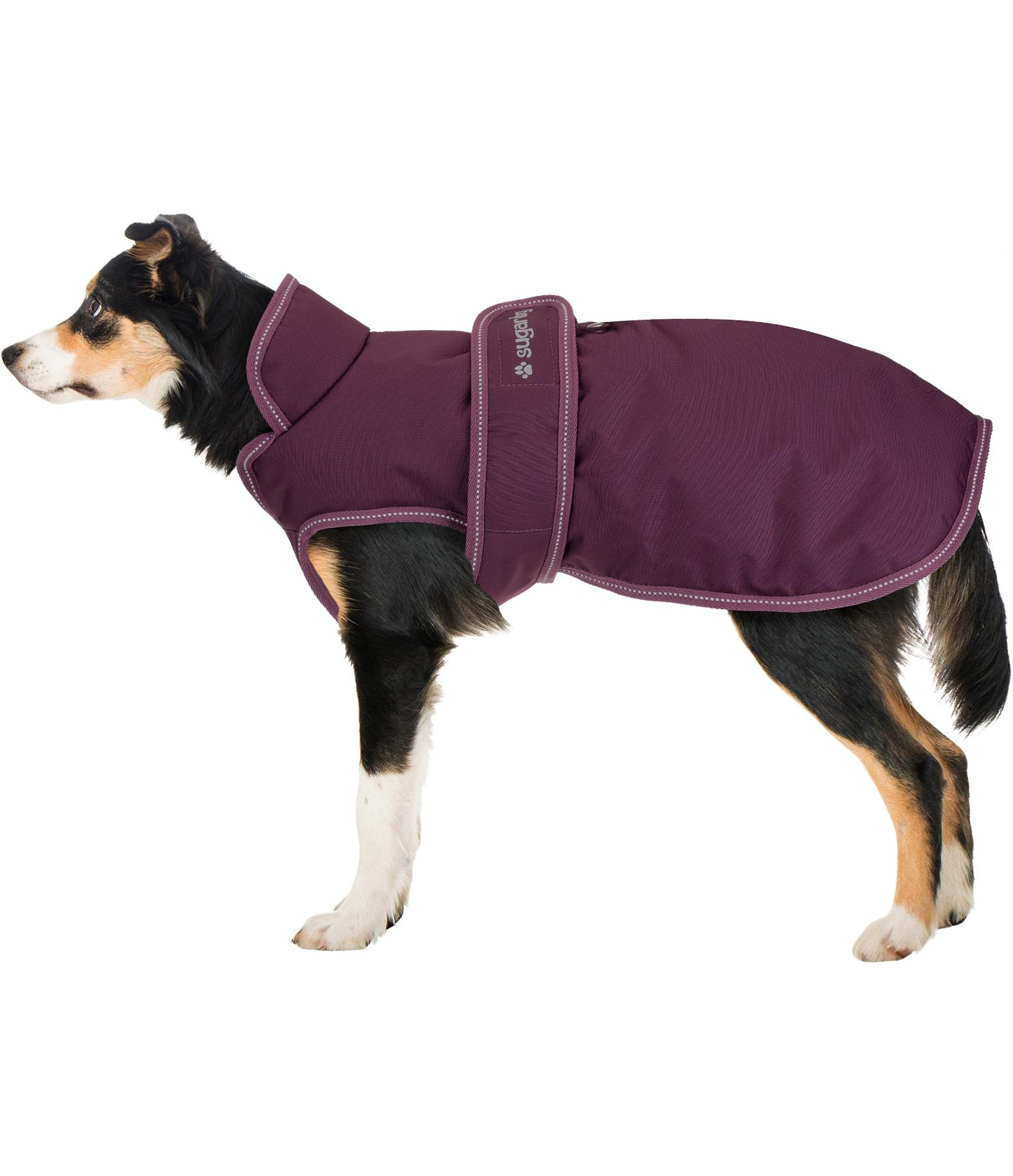 Dog Coat Eddie With Fleece Lining 200 G Kramer Equestrian