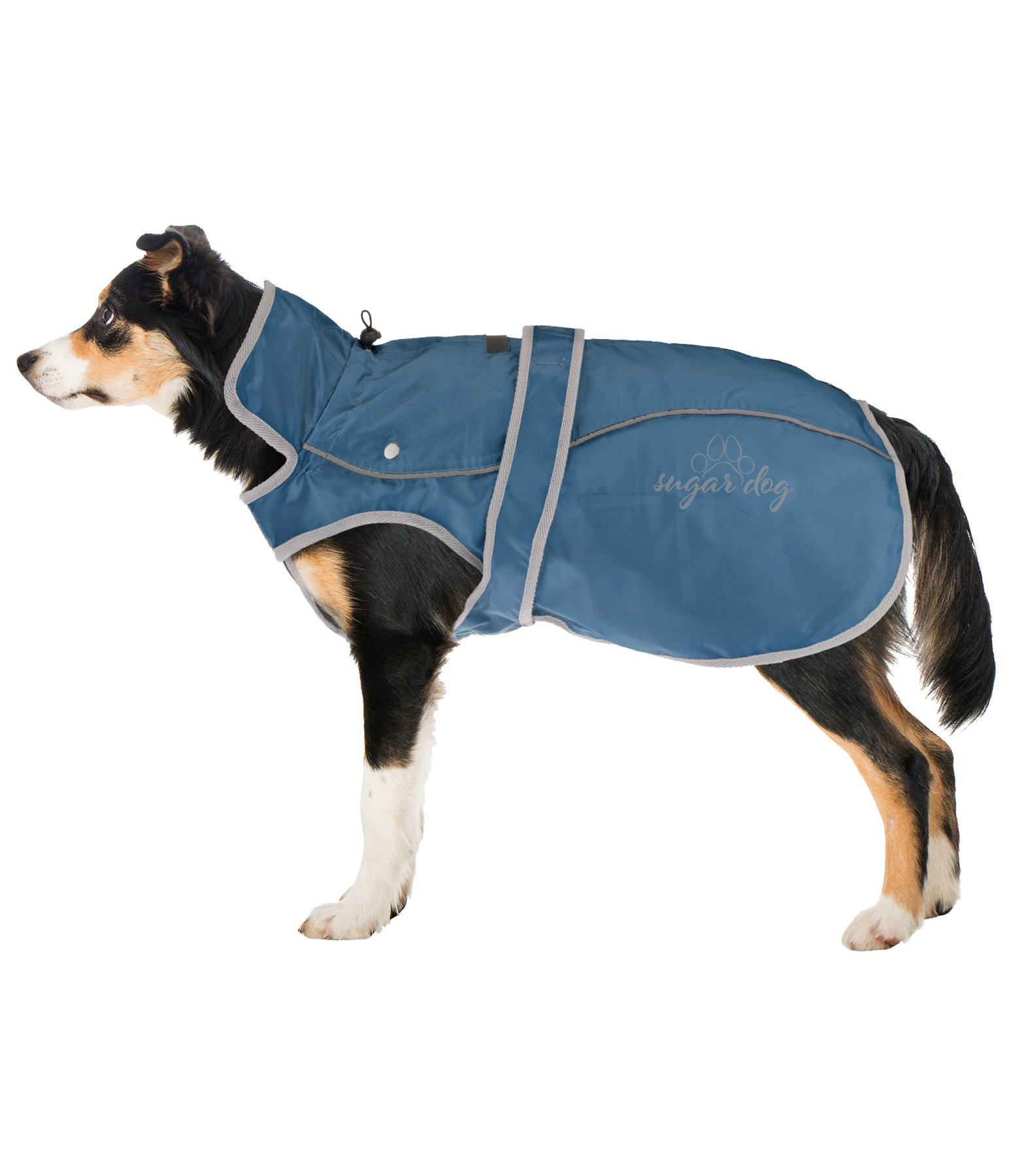 Dog Raincoat Ally 2 in 1, Dolphin Blue