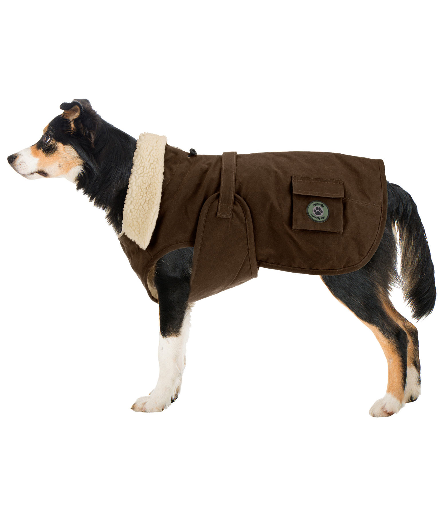 Oilskin Dog Raincoat Yosemite