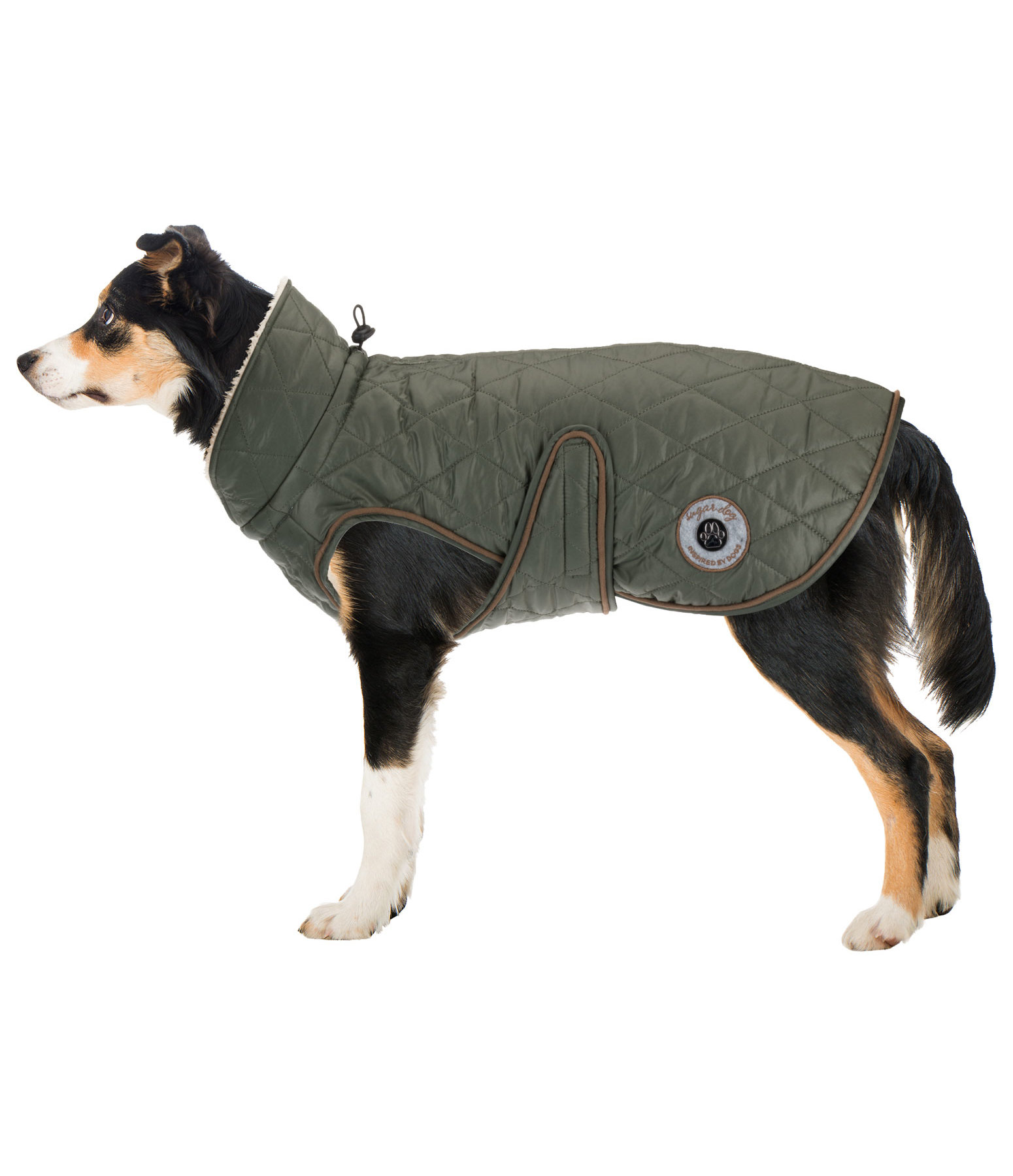 Dog Coat Archie with Teddy Fleece Lining, 160 g