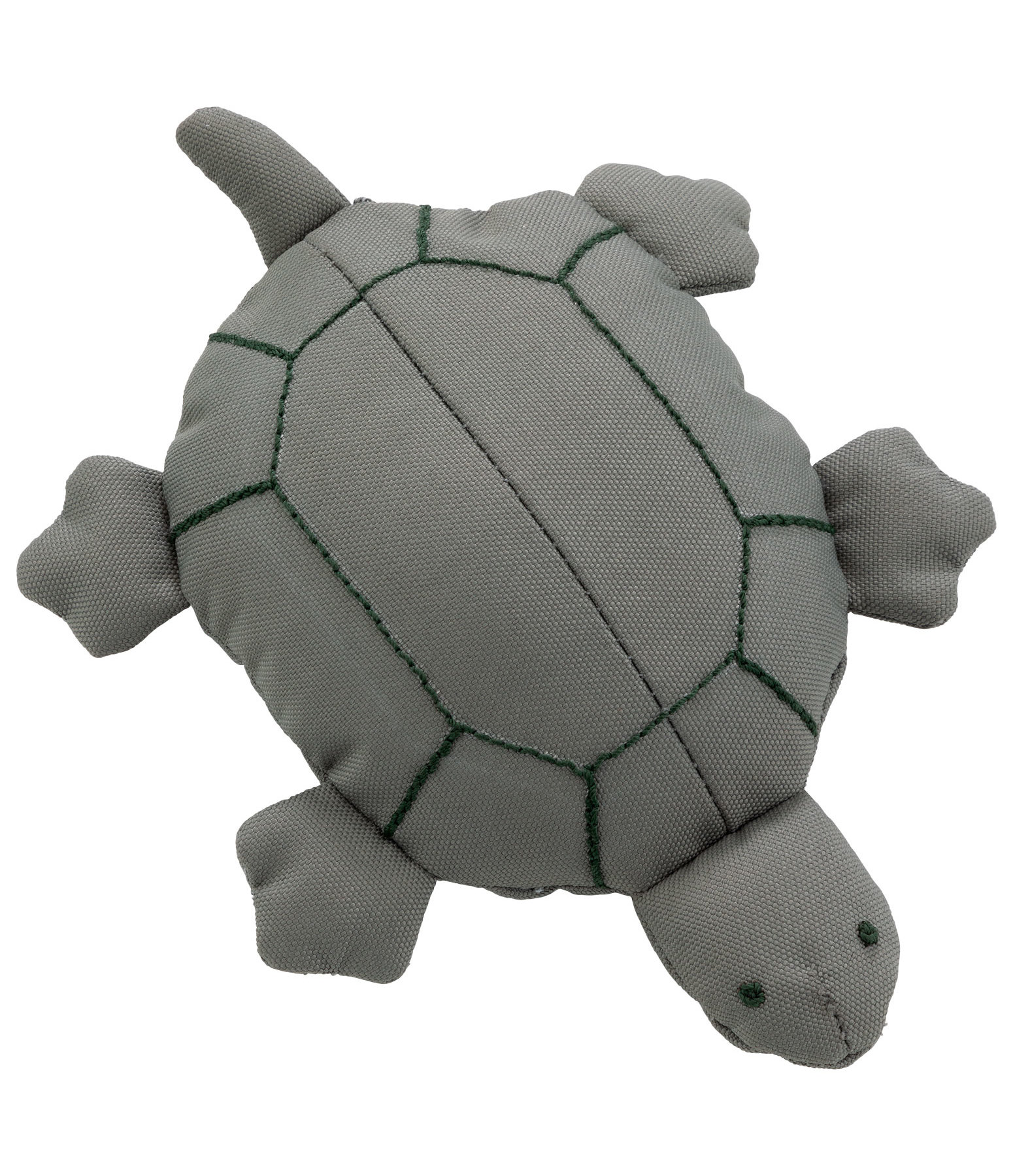 Water Toy Green Sea Turtle