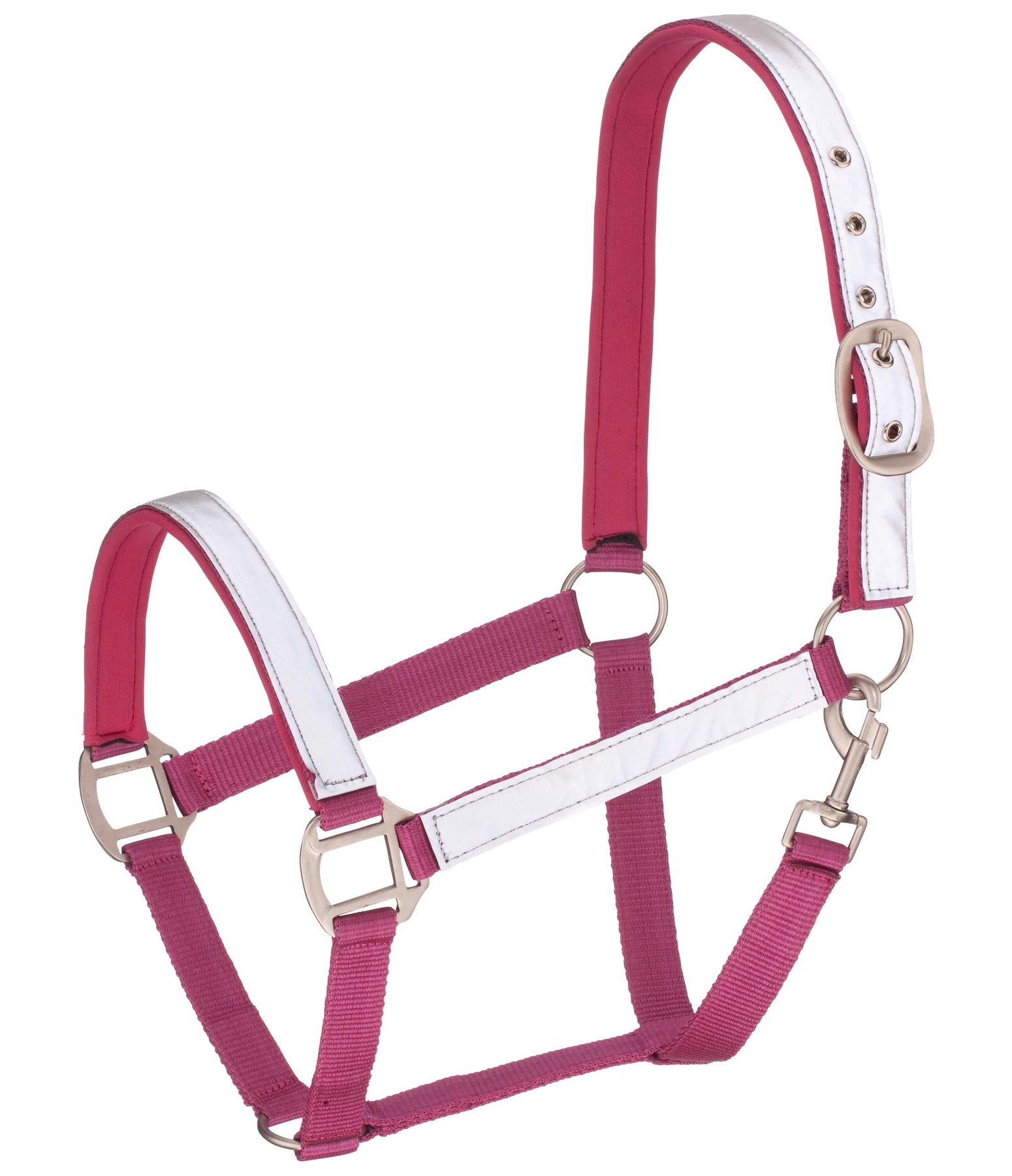 Reflective Headcollar Shiny