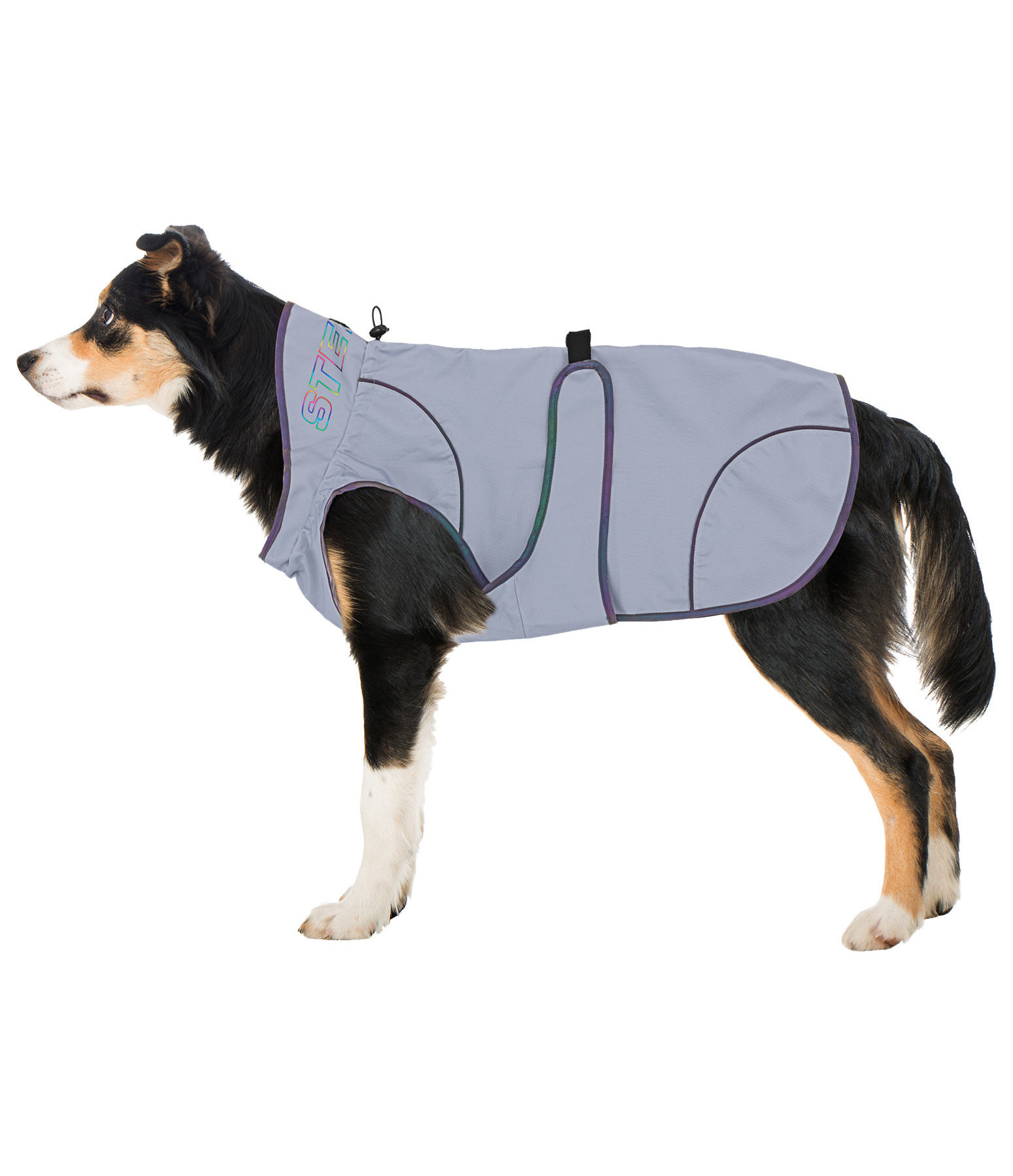 Reflective Dog Coat Rainbow