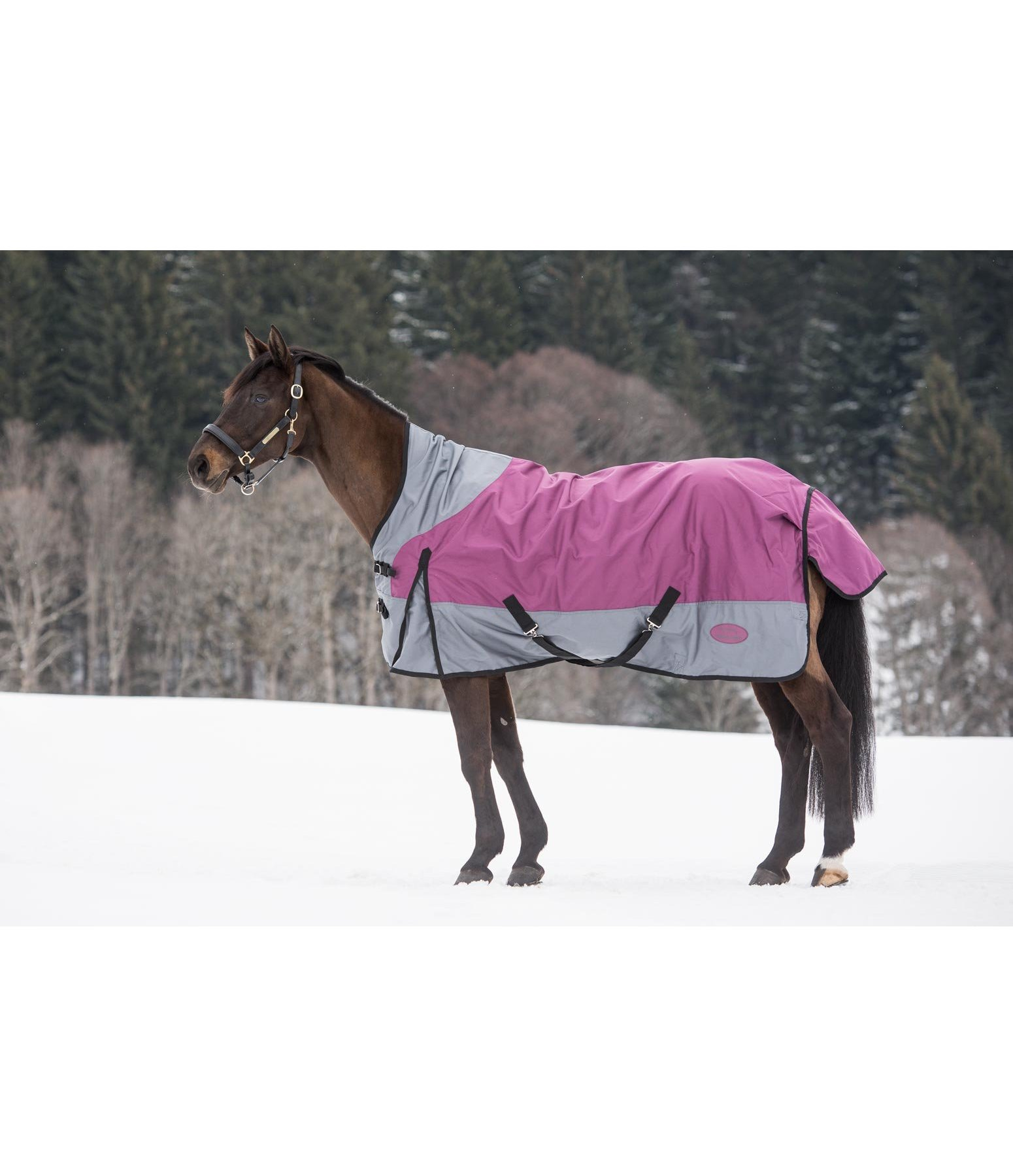 High Neck Turnout Rug 1680 Lightweight Turnout Rugs