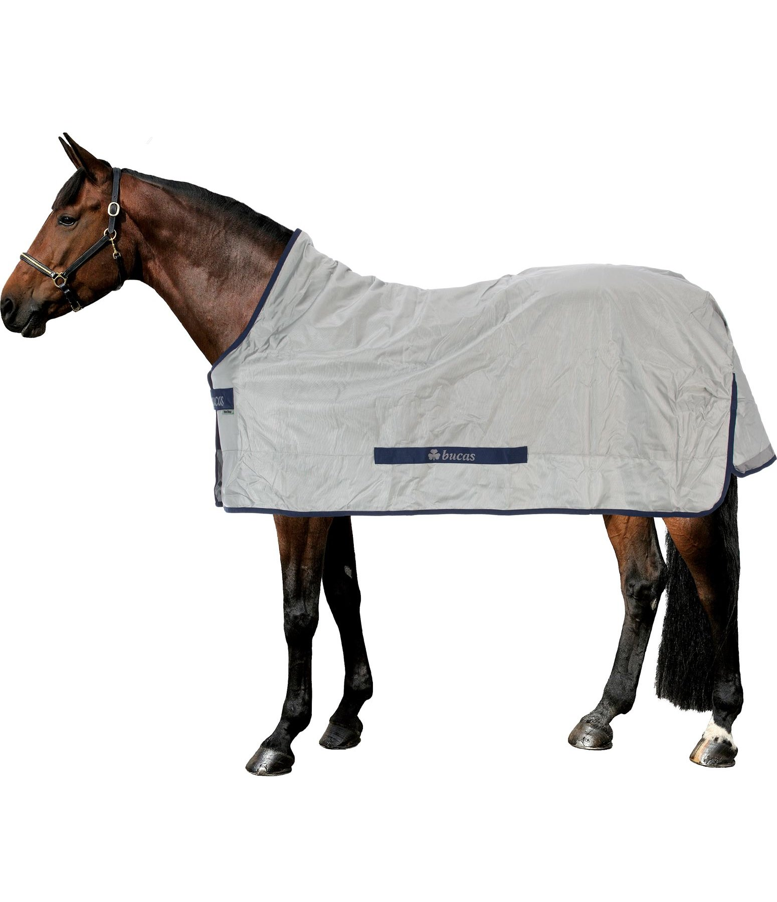 High Neck Power Turnout Rug