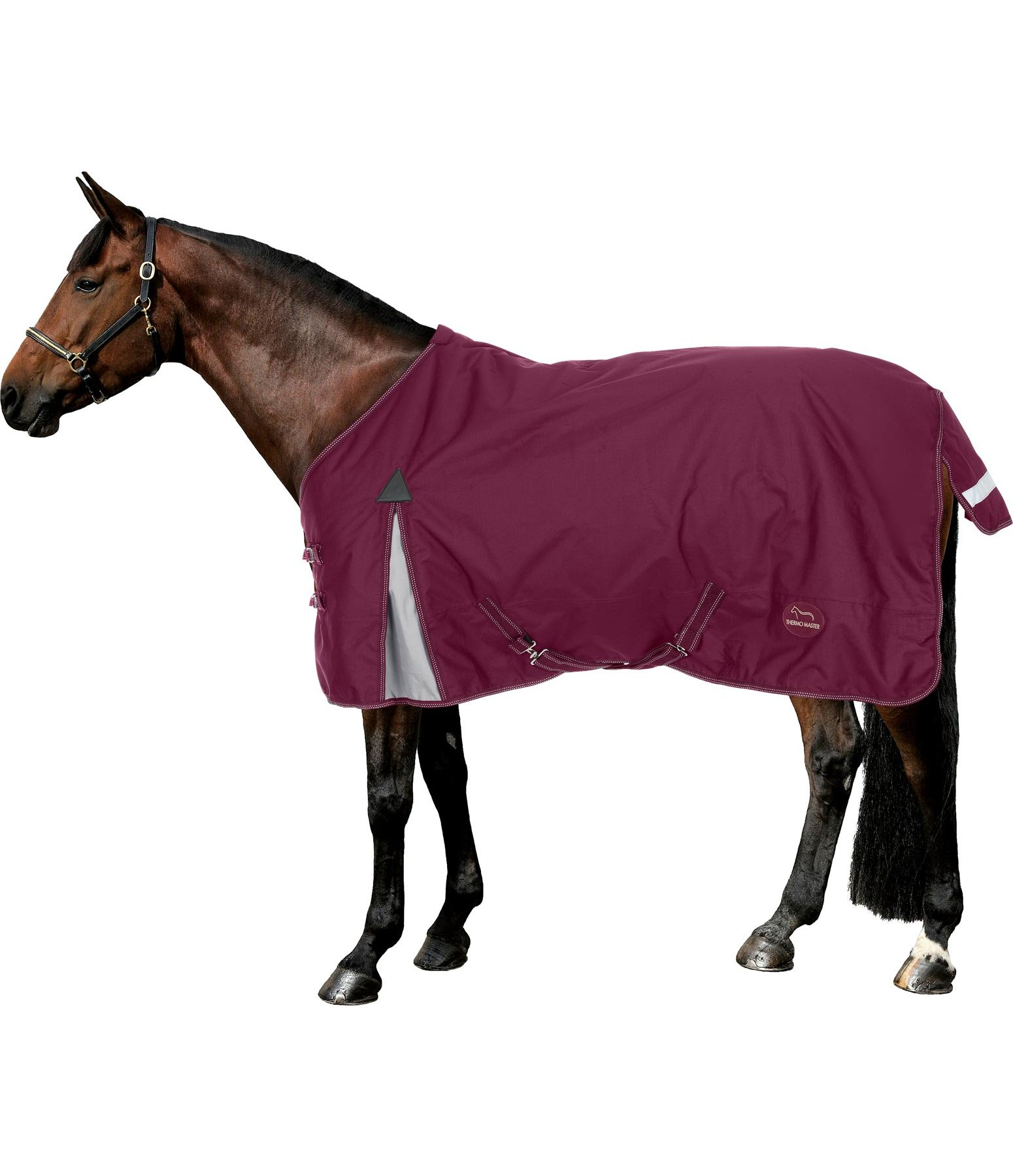 Winter Turnout Rug Candia, 100g