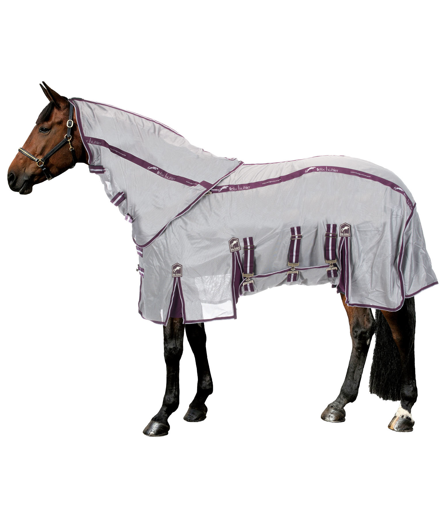 Fly Rug Maximum Comfort