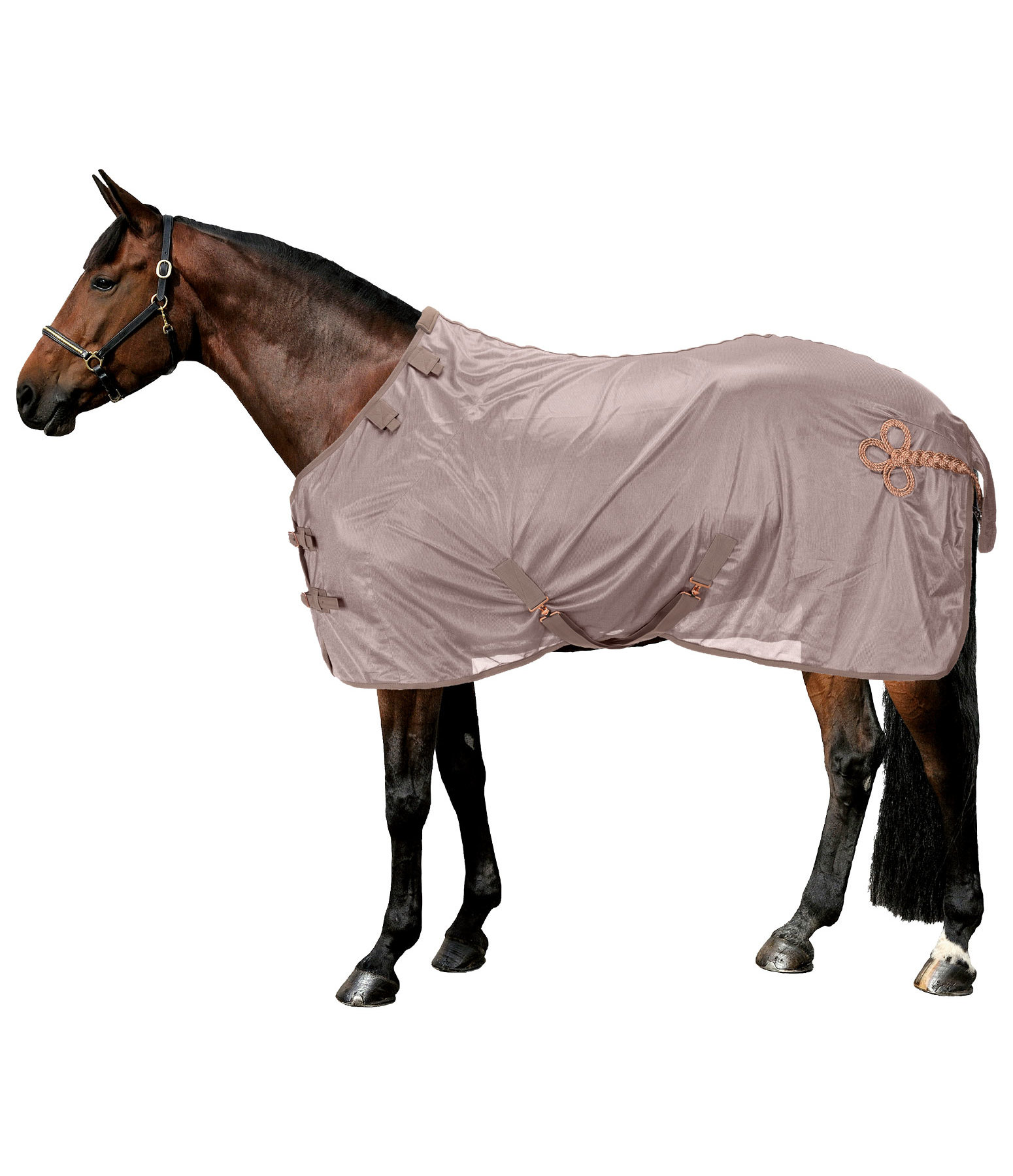 Fly Rug Royal