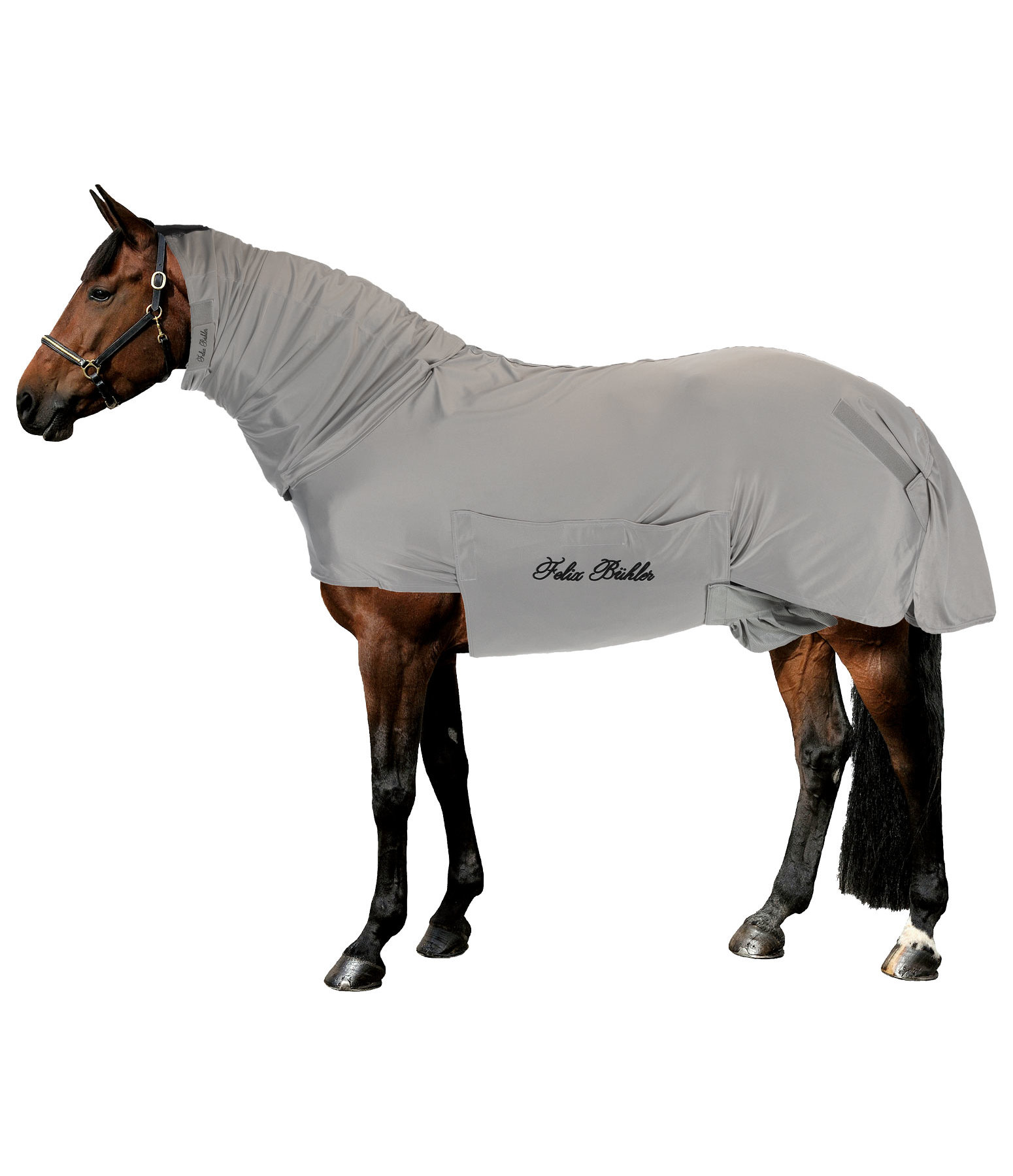 Sweet Itch Fly Rug Gibson