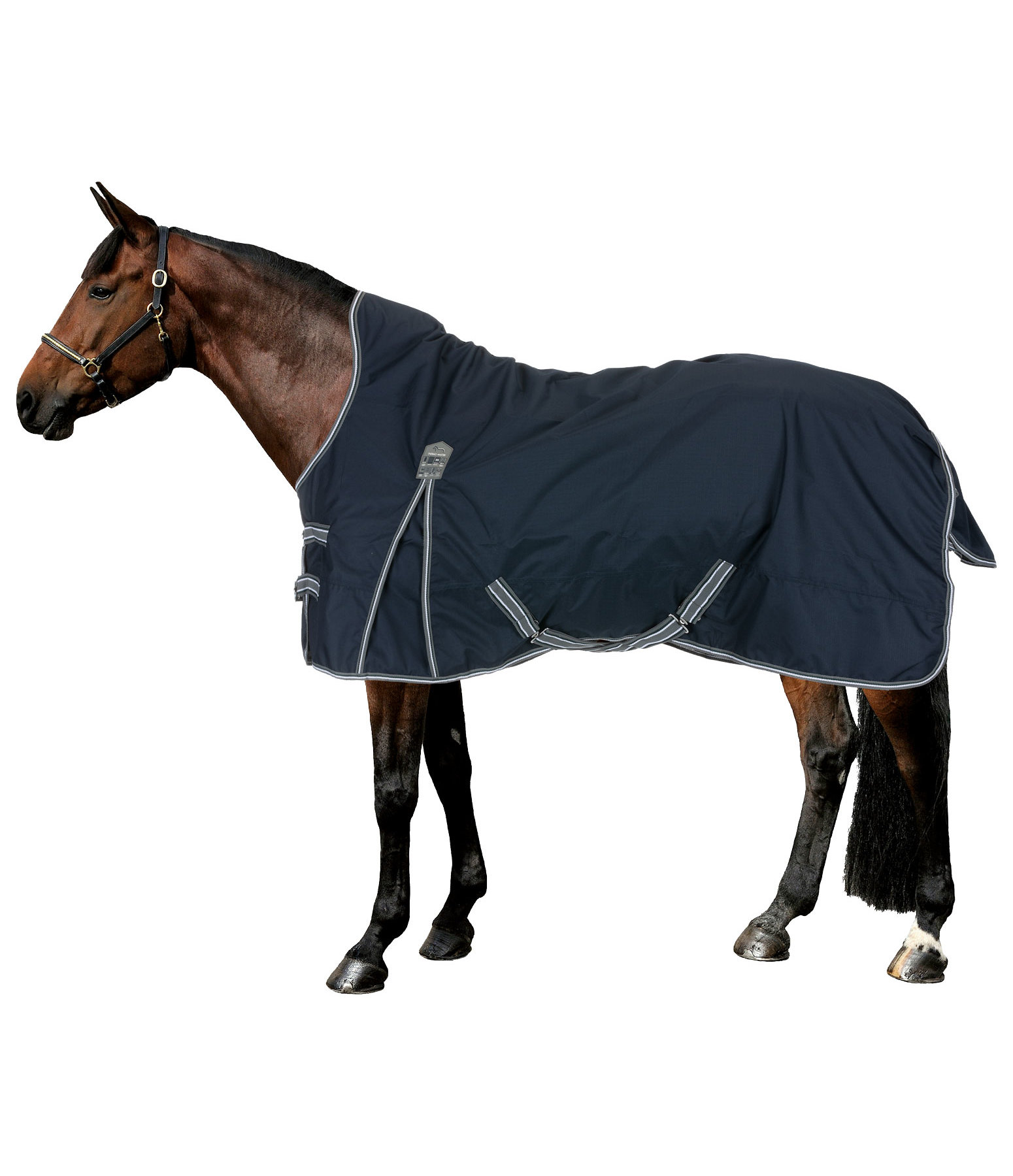 High Neck Turnout Rug Kalina II, 100g