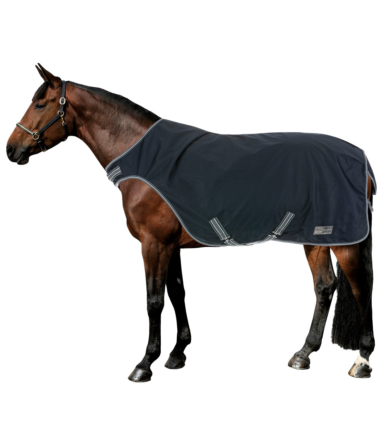 Turnout Walker Rug Kasimo II, 200g
