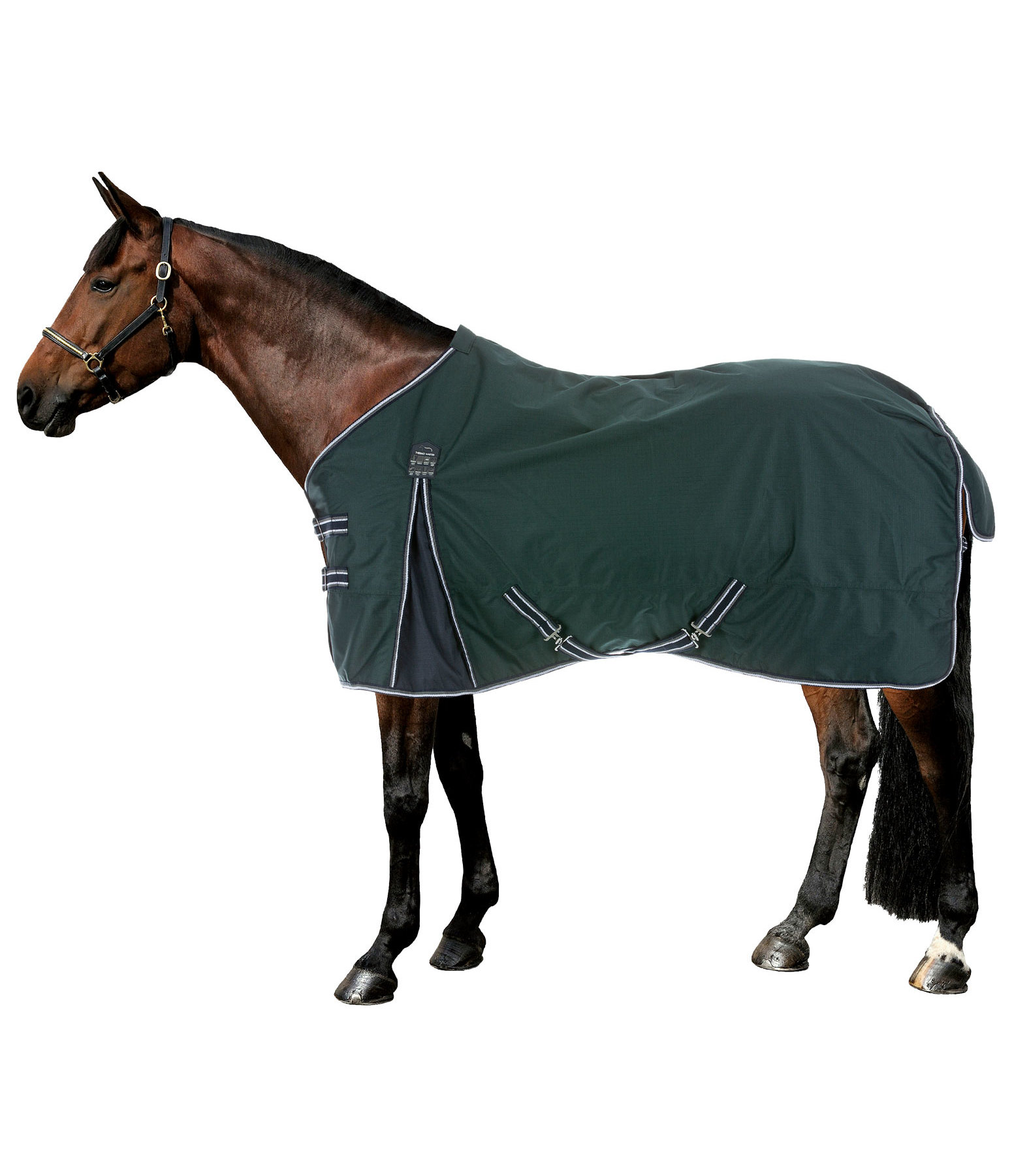 Turnout Rug Kaito With Fleece Lining And Teflon Coating, 0g