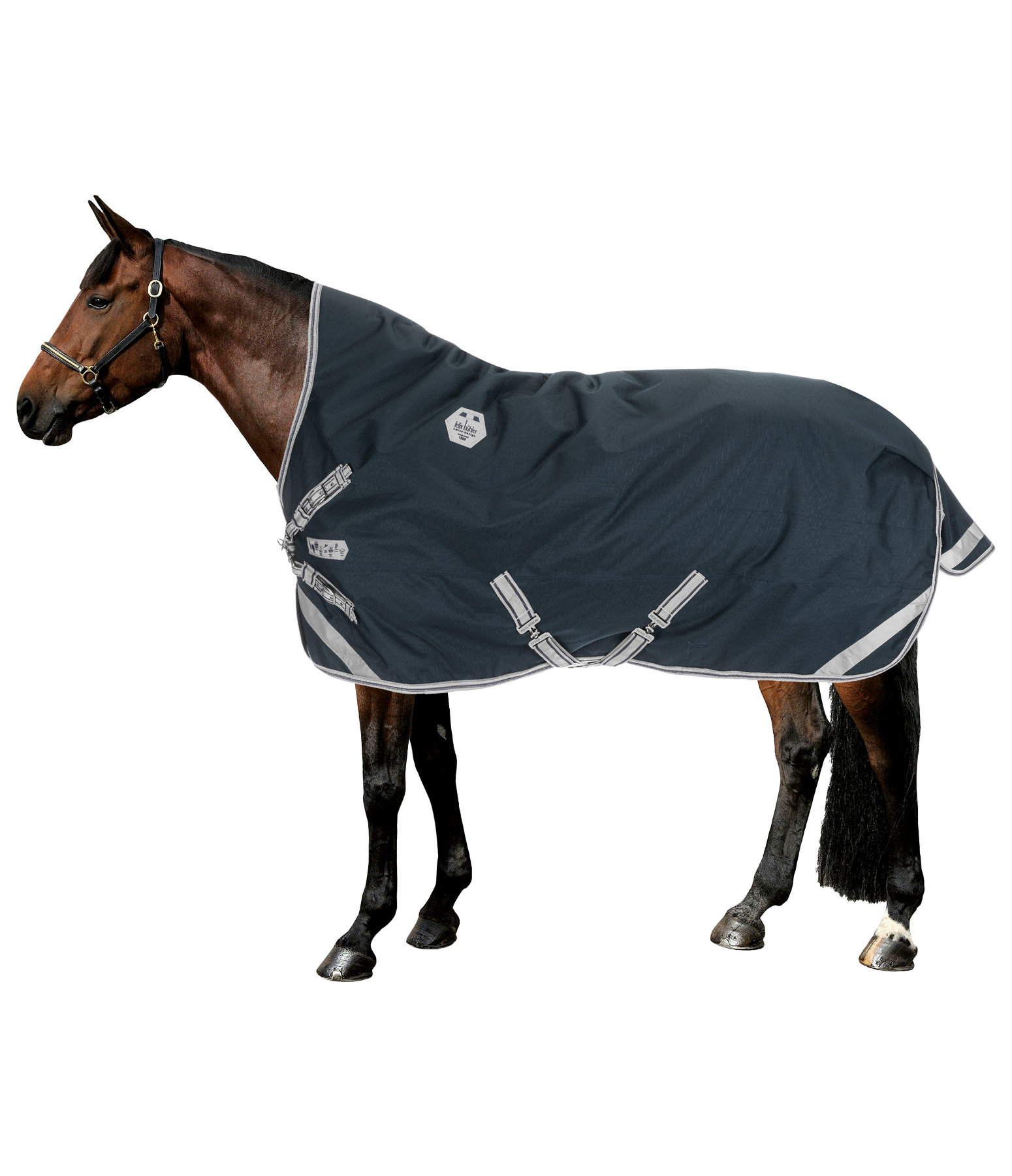 High Neck Turnout Rug Paddock Reflective, 100g