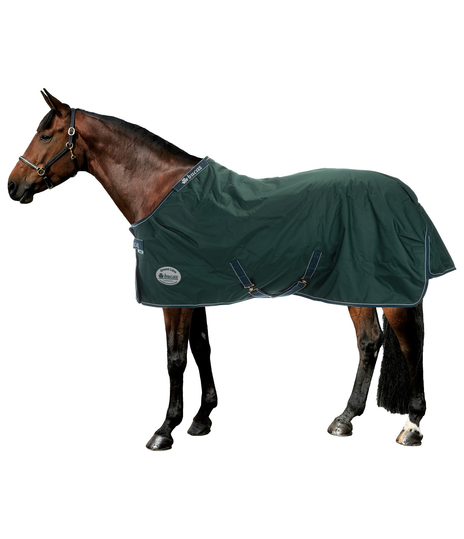 Ecofriendly Turnout Rug 100g