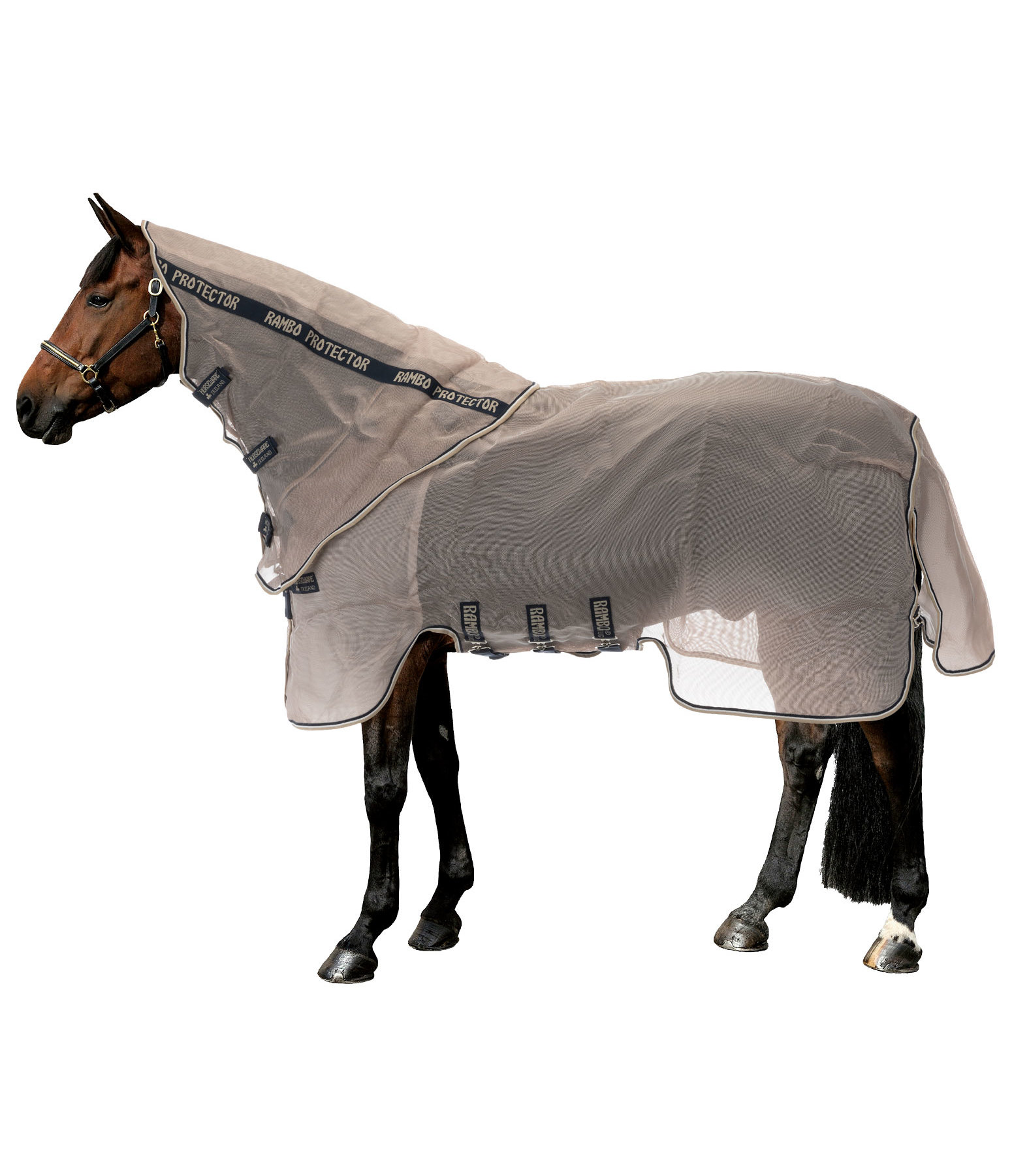 RAMBO Fly and Sweet Itch Rug Protector with UV Protection 65+