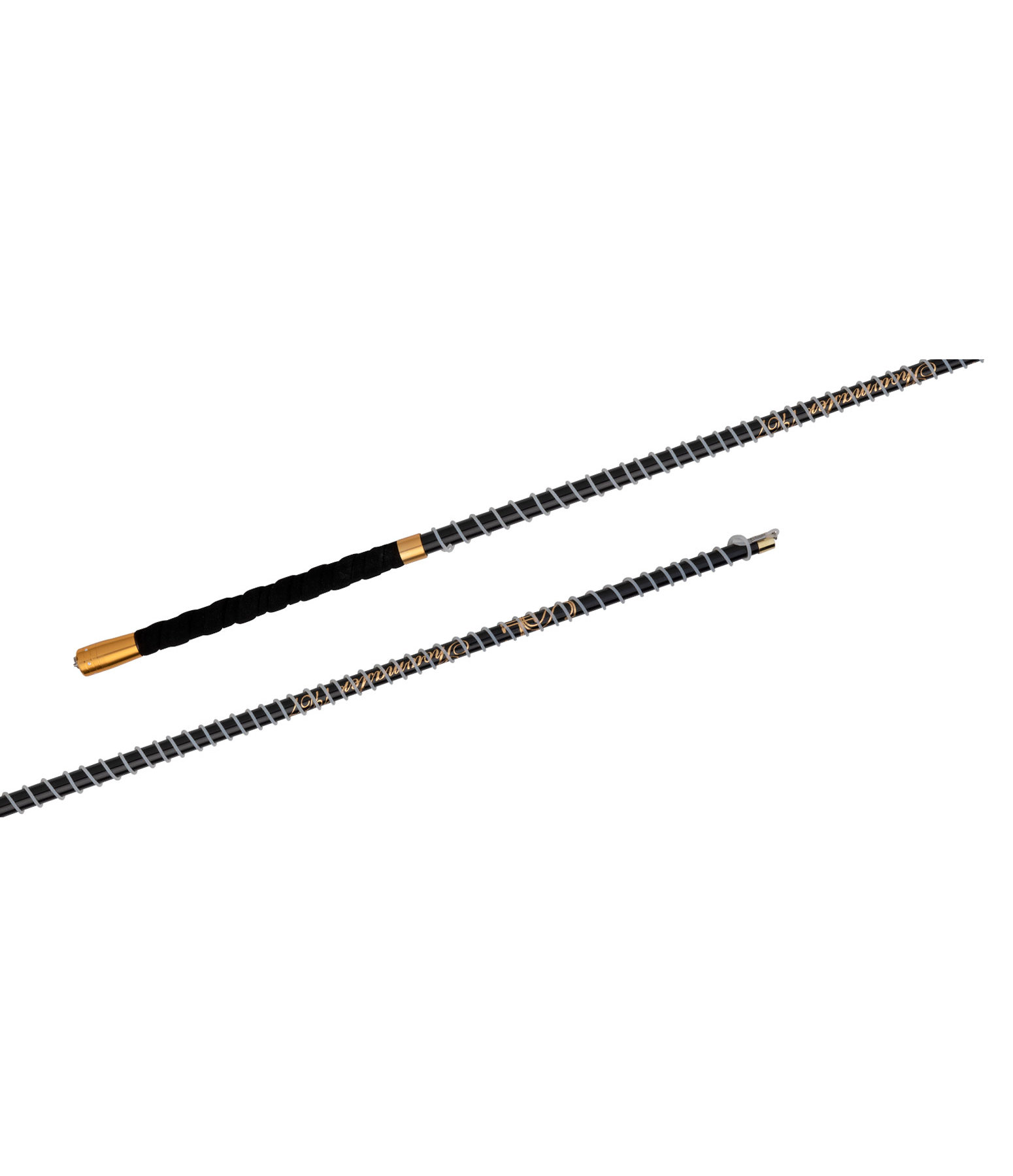 Telescopic Lunge Whip Slim