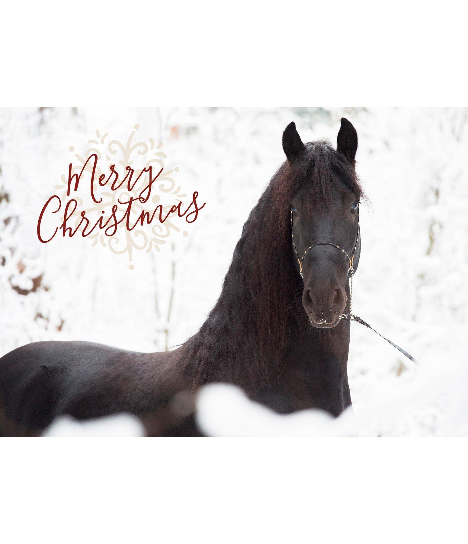 Greeting Card Merry Christmas Iv Kramer Equestrian