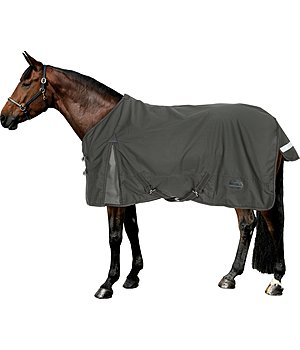 THERMO MASTER Turnout Rug Namur with Fleece Lining - 422203