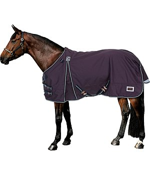 Felix Bühler Turnout Rug Autumn Breeze II with Liner System - 422371-5_6-DA