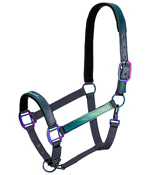 Felix Bühler Headcollar Colour X-Plosion Ashley - 440658