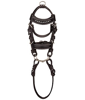 SHOWMASTER Mini Bridle - 621190