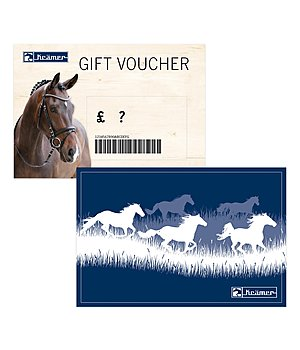 Kramer Gift voucher - from £ 50 upwards - with a free Santa Horsly - GSGB1