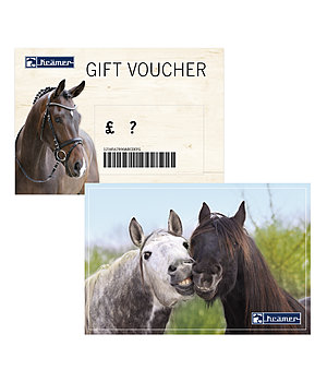 Kramer Gift voucher - from £ 50 upwards - with a free Santa Horsly - GSGB7