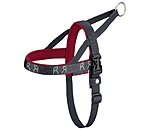 sugar dog Norwegian Harness Loyal Friendship - 230799-S-BM
