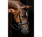 CLARIDGE HOUSE Flash Bridle Flora - 320729-F-S - 2