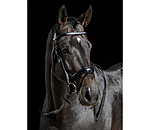 CLARIDGE HOUSE Flash Bridle Bentota - 320755-F-S - 2
