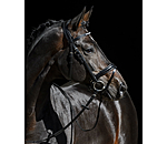CLARIDGE HOUSE Flash Bridle Bentota - 320755-F-S - 3