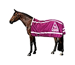 STEEDS Reflective Walker Rug HORSE 360° - 340202-SH-BY - 2
