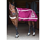 STEEDS Reflective Walker Rug HORSE 360° - 340202-SH-BY - 3