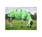 THERMO MASTER Sweet Itch Rug Dahna - 421886-4_0-LI - 4