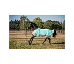 THERMO MASTER Fly Rug Ice Cream - 421944-4_6-IG - 3