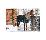 THERMO MASTER Transitional Stable Rug with Fleece Lining - 421992-4_6-S - 2