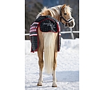 THERMO MASTER Turnout Rug Little Norway - 422191-3_6-NV - 2