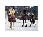 THERMO MASTER Turnout Rug Little Norway - 422191-3_6-NV - 3