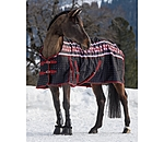 THERMO MASTER Turnout Rug Little Norway - 422191-3_6-NV - 4