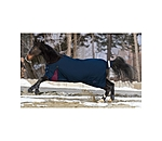 THERMO MASTER Turnout Rug Namur with Fleece Lining - 422203-4_6-MN - 5