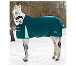 THERMO MASTER Turnout Rug Duvra with Fleece Lining, 50 g - 422204-4_6-TI - 4