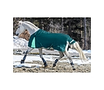 THERMO MASTER Turnout Rug Duvra with Fleece Lining, 50 g - 422204-4_6-TI - 5