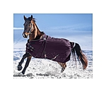 Felix Bühler Turnout Rug Autumn Breeze II with Liner System - 422371-5_6-DA - 2
