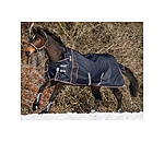 Felix Bühler High Neck Turnout Rug Estero 1680 D, 50g - 422393-6_6-M - 3