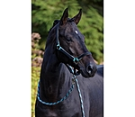 SHOWMASTER Headcollar Set Comfy with Lead Rope - 440272-C-S - 2