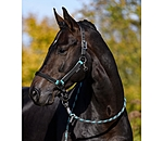 SHOWMASTER Headcollar Set Comfy with Lead Rope - 440272-C-S - 3