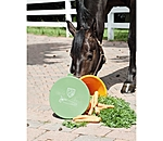 SHOWMASTER Carrot Bucket Pippa - 450322 - 3