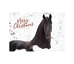 SHOWMASTER Greeting Card Merry Christmas IV - 621518